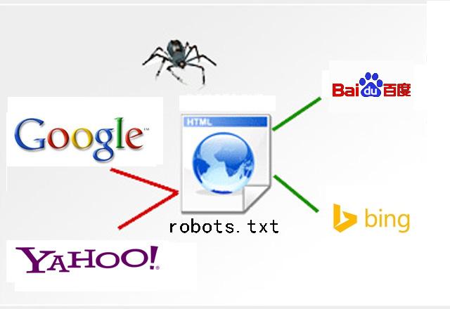 怎样查看网站robots.txt内容